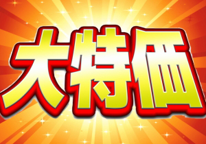 人気宿・初夏の大特価プラン